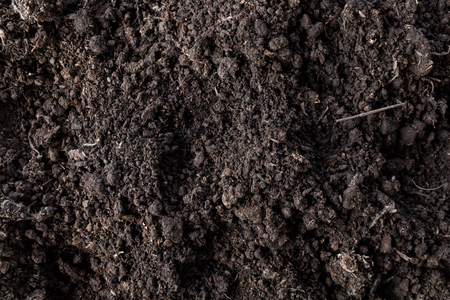 close up detail of soil texture, natural for background Stock fotó