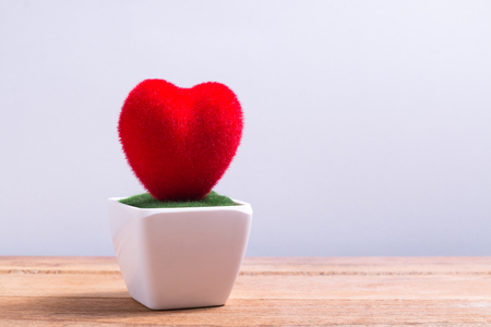 pot of red heart shape on wooden table and blank background