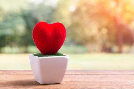 pot of red heart shape on wooden table and natural blur at background