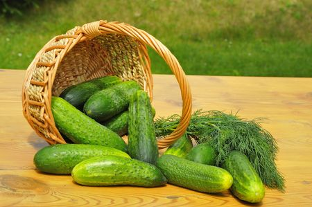 Ingredients for pickles.Still life with cucumbers. Stock Photo