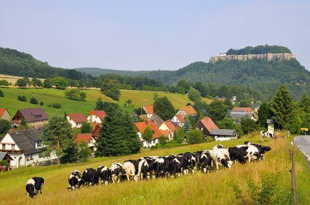 The King Stone, in Saxon Switzerland.