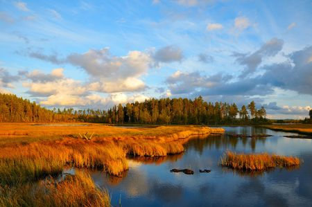 Evening at a lake in Sweden in the autumn.