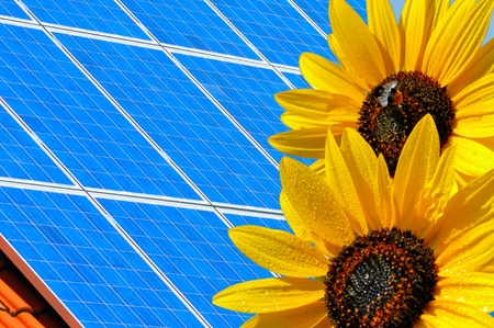 Solar modules with sunflowers. Stock Photo - 9118868