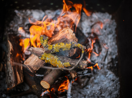 Red flame from a cut of a tree, dark gray coals inside a metal brazier. Firewood burning in a brazier on a bright yellow flame.