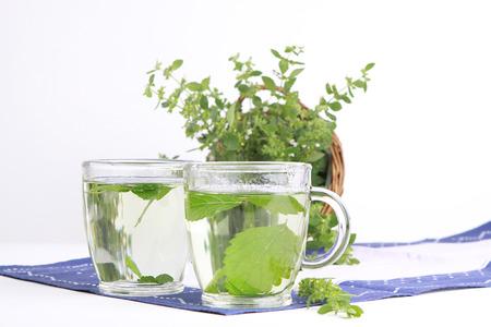 melissa: tea from melissa