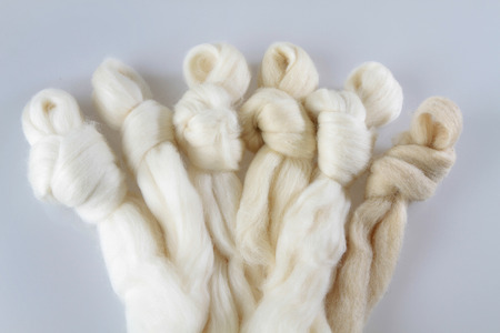 sheep wool Фото со стока