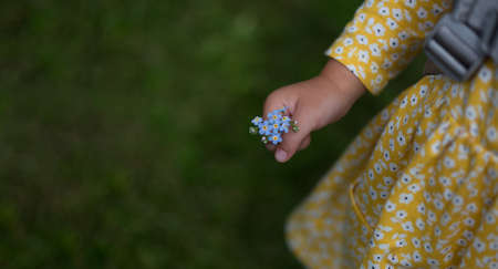 Small girl hand holding forget-me-nots. Girl is wearing yellow dress with flowers. Empty space with blurred green grass. Summer and carefree childhood concept