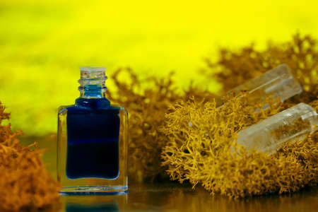 A bottle of aurasoma with the blue essence and crystal on the moss background. Zdjęcie Seryjne