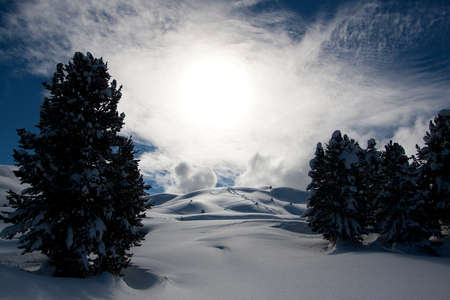 Snow powder with skiis traces. Mountains ideal for freeride. Sunny winter day. Copy space