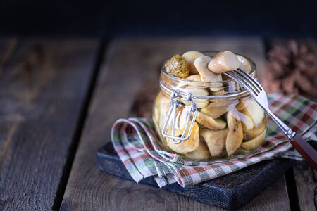 Canned edible porcini mushrooms in a glass jar. Homemade pickled mushrooms. copy space