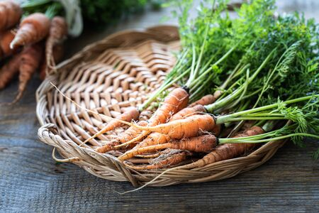 Organic carrots on a wicker tray, on a wooden dark background. Rustic natural style