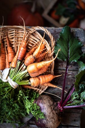 Organic carrots on a wicker tray, top view on a wooden dark background. Rustic natural style