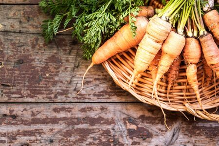 Organic carrots on a wicker tray, top view on a wooden dark background. Rustic natural style. copy space