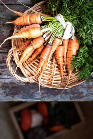 Organic carrots on a wicker tray, top view on a wooden dark background. Rustic. copy space
