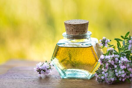 Bottle of thyme essential oil with fresh sprigs of thyme on a wooden background and nature in the background