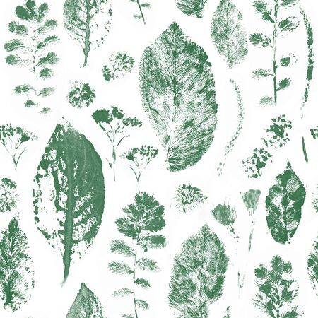 Many leaves stamps scattered on white background. Natural autumn, fall pattern.