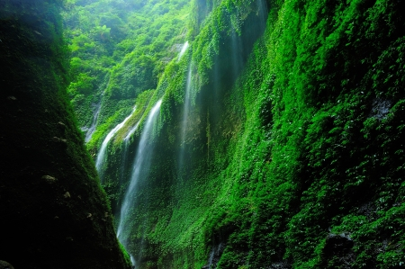 Madakaripura Waterfall, Indonesia photo