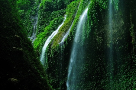 Mossy Waterfall  photo