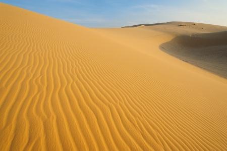 Sand Pattern on Sand Dunes photo