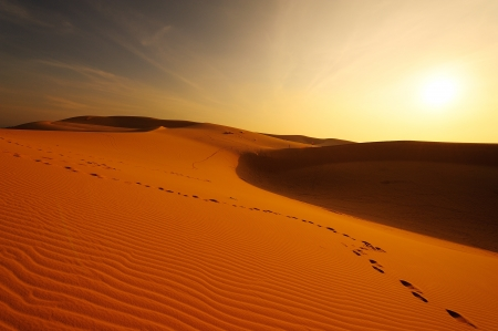 Sand Dunes at Sunrise photo