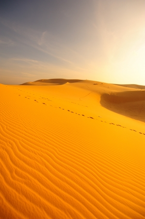 Sand Dunes at Sunrise