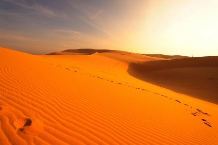 Sand Dunes in Deserts