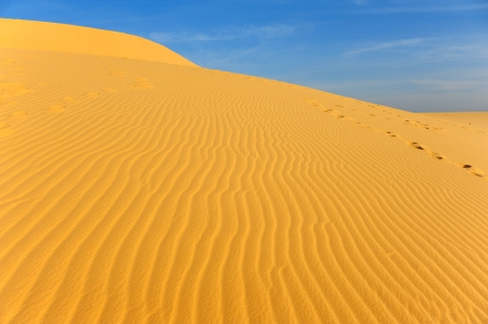 Sand Pattern on Sand Dunes photo