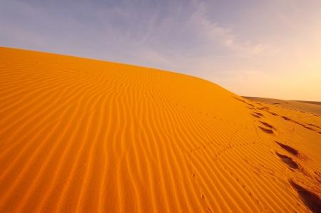 Endless Sand Dune Landscape photo