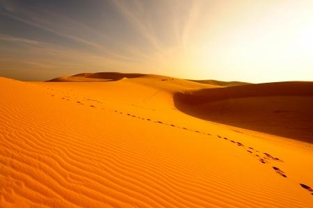 extreme heat: Endless Sand Dune Landscape
