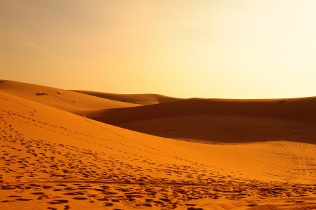 Endless Sand Dune Landscape photo