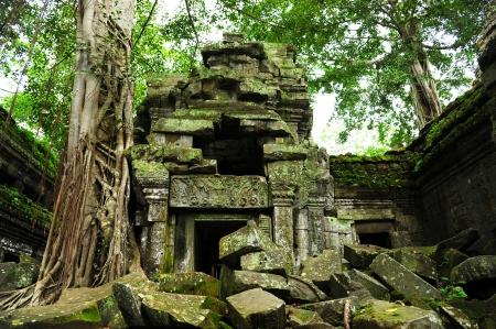 Ta Prohm Temple in Angkor Thom, Cambodia