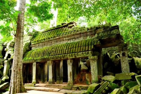 Ruin of Ta Prohm Temple in Angkor Thom, Cambodia