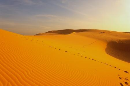 Sand Pattern on Sand Dunes Stock Photo - 23319766