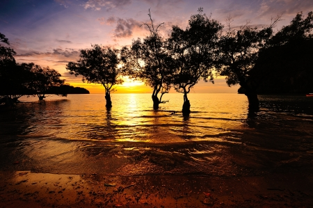 Serene Beach at Sunrise on the Island of Southern Thailand photo