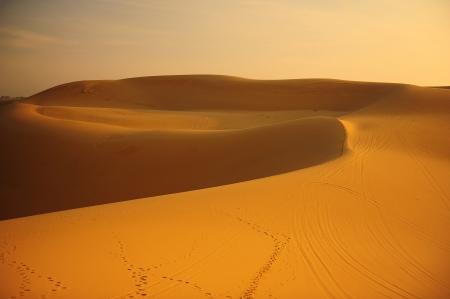 Sand Dunes at Sunrise Stock Photo - 23364149