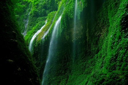Mossy Green Waterfall in Tropical Rainforest Stock Photo