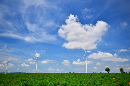 Wind Turbine Fields photo
