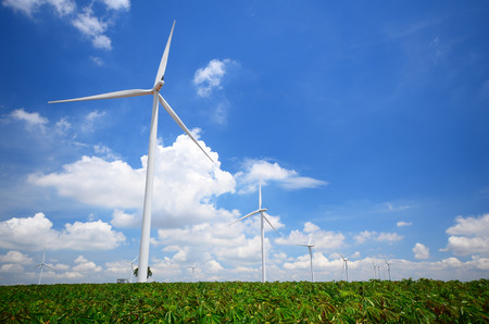 Wind Turbines in Green Fields photo