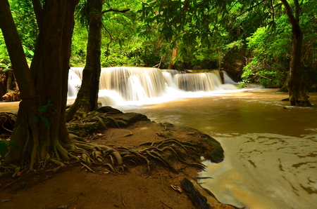 Natural Waterfalls in Rain Forests