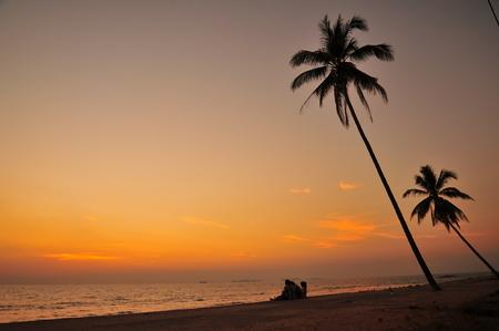 Beautiful Beach at Sunset Backgrounds photo