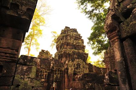 thom: Ta Prohm Temple of Angkor Thom Cambodia