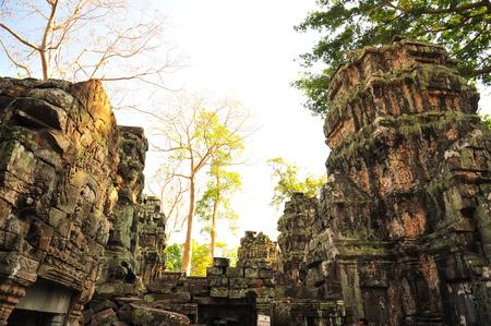 angkor thom: Ta Prohm Temple of Angkor Thom Cambodia