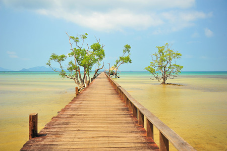 Wooden Piers on Tropical Islands