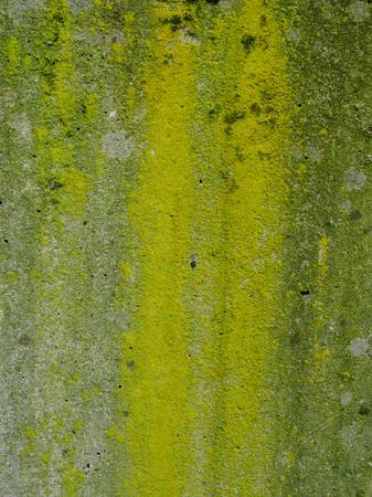 Texture in Green Banco de Imagens
