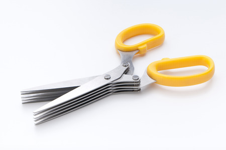 shredder: Shredder scissors