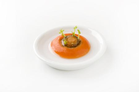 regenerated: Reborn vegetable regenerated vegetables carrot