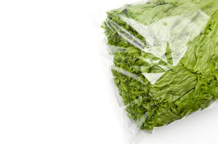 green leaves lettuce