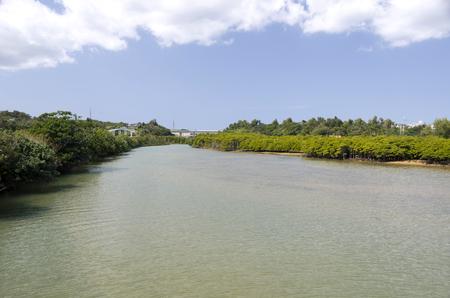 downstream: Okukubi River