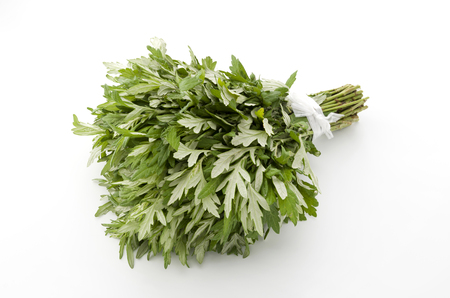 Fresh mugwort leaves on a white background. Banco de Imagens - 84195039