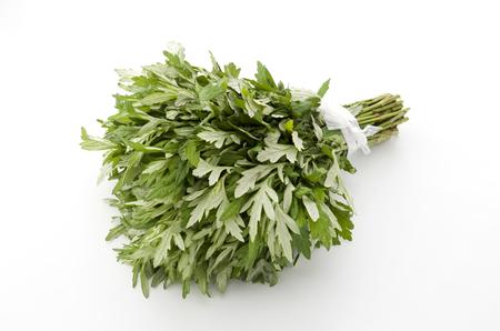 eliminate: Fresh mugwort leaves on a white background. Stock Photo
